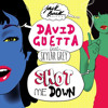David Guetta feat Skylar Grey - Shot me Down (Bang Bang)