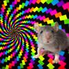The Most Dangerous Mouse Trap