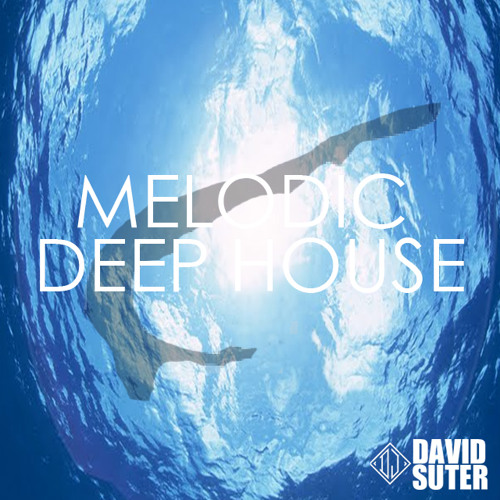 "Deep Vocal House Mix - ""See Breeze"" *Free Download* // [DJ-Mix] By David Suter - 01/2014"