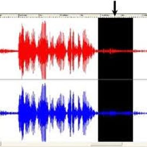 Patriot-Made Audio_ParagonProPac Decor for Walls