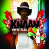K Naan Waving Flag  Dubstep Remix
