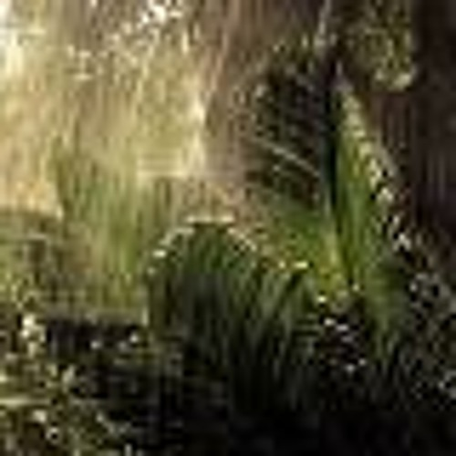 Raindrops in the Jungle - Mixed by AudioSyndrom (Golden Children)