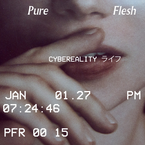 Pure Flesh - CYBEREALITYライフ Guest Mix - January 27, 2014