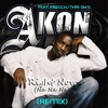 ♫ French/Thai DJ's ★ Feat AKON: Right Now (Na Na Na) Remix Edit ♫ mp3