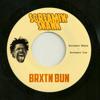 Screamin' Skank (feat. Big Youth)