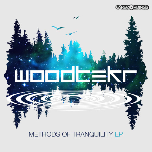 Woodtekr - Night Trees
