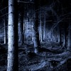 Eerie Forest (Fantasy / Adventure)