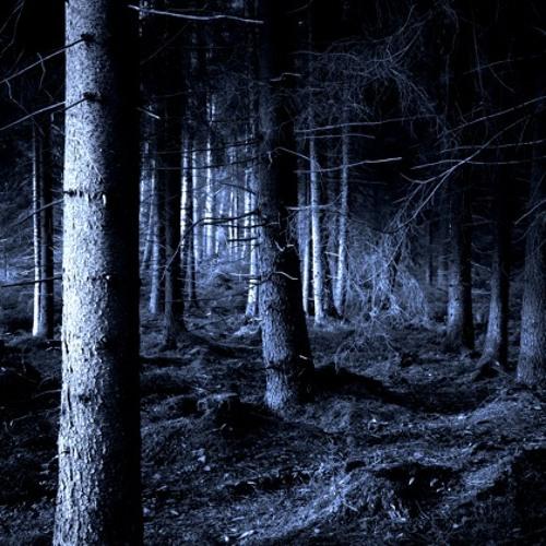Eerie Forest (Fantasy / Adventure)