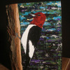 Learning about the Red-Headed Woodpecker