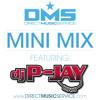 DMS MINI MIX WEEK #102 DJ P-JAY