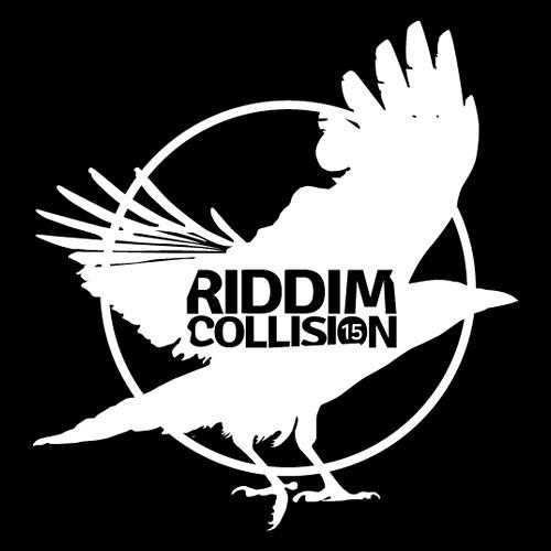 Ohmwerk Live @ Riddim Collision Festival #15 - Lyon (France)