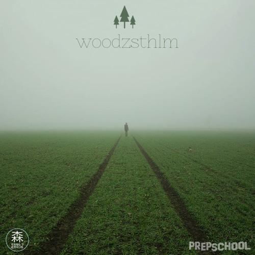 WoodzSTHLM - HighTide ft. Olle Grafström (Original Mix)