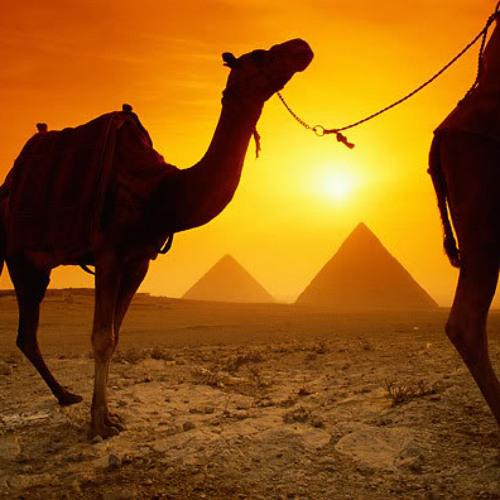 Future Sound Of Egypt 325 1-27-2014
