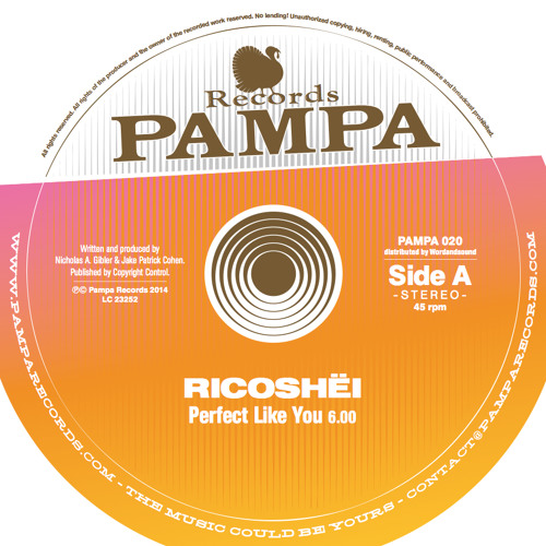 Perfect Like You (Preview) - PAMPA020 (96kbps)