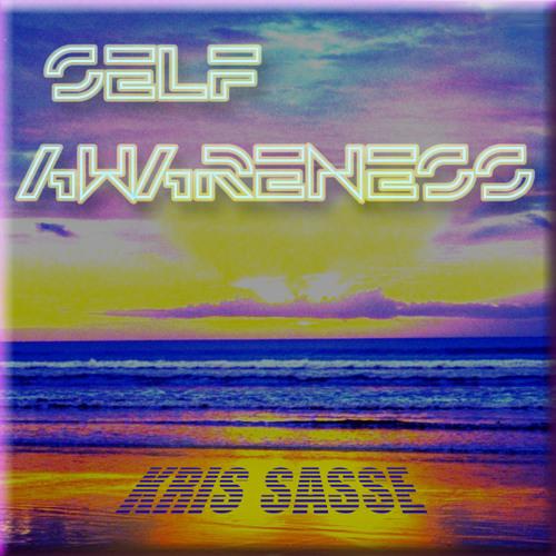 Kris Sasse - Self Awareness (Electro House)