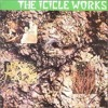 The Icicle Works - In The Dance The Shaman Led