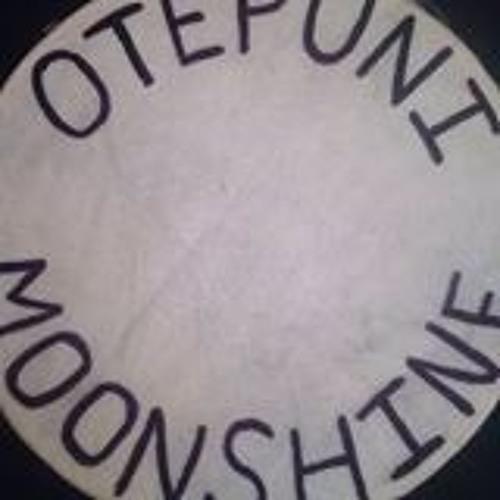 Otepuni Moonshine - Beach Bar, Invercargill - November 2013