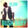 Bush Baby - Slow Fade
