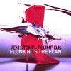 JEM STONE v PLUMP DJs - FLUNK HITS THE FLAN - free download!
