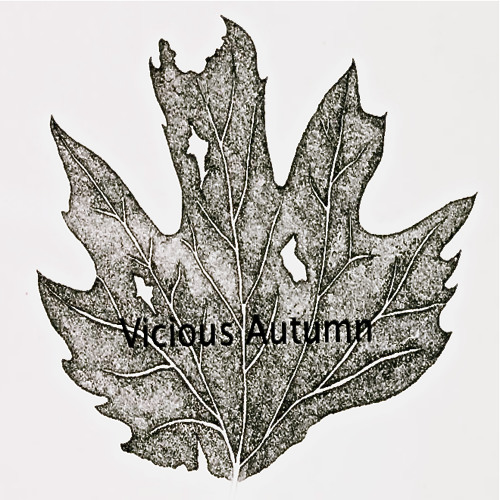 Vicious Autumn - Broken (Demo)