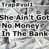 TrapMix'She Ain't Got No Money In The Bank/vol2