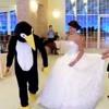 موسيقى رقصه البطريق mp3