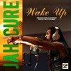 Available on iTunes - Jah Cure - Wake Up [Naturesway Ent/VPAL Music]