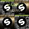 DubVision & Firebeatz Vs Swanky Tunes - Full House Rockin (SPARKY P Mashup)