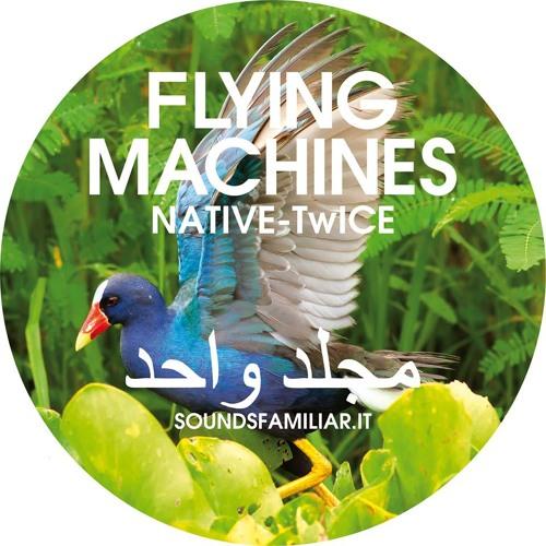 A1. Polar (Flying Machines EP vol.1)