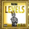 Meek Mill - Levels (Instrumental) REMAKE