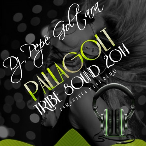 DJ PEPÊ GOLTARA - PALLAGOLT TRIBE SOUND 2014