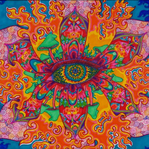 Acid Program