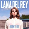 Rudi Schroder_-_Ft. Lana del Rey&Eminem_-_Born to Die.(Original Mix.)