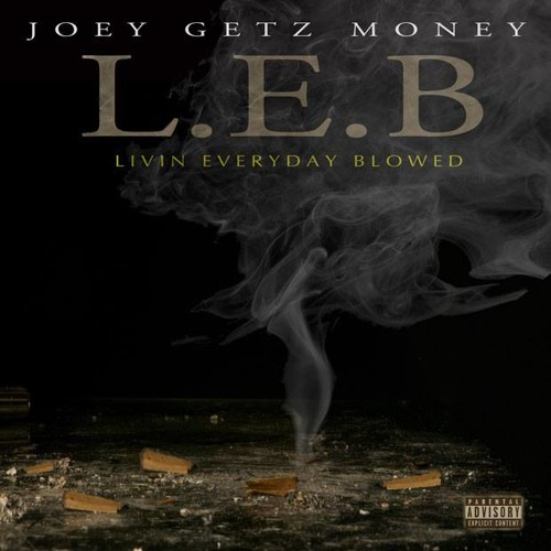 Love No Bitch  │ Joey Getz Money (Preview)