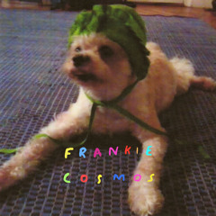Frankie Cosmos :: Birthday Song