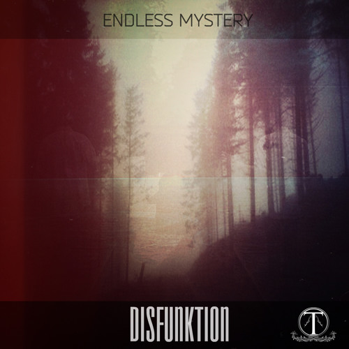 "ENDLESS MYSTERY - DISFUNKTION (Original Mix) Out 27/02/2014 on ""TERRACOTTA LABEL"""