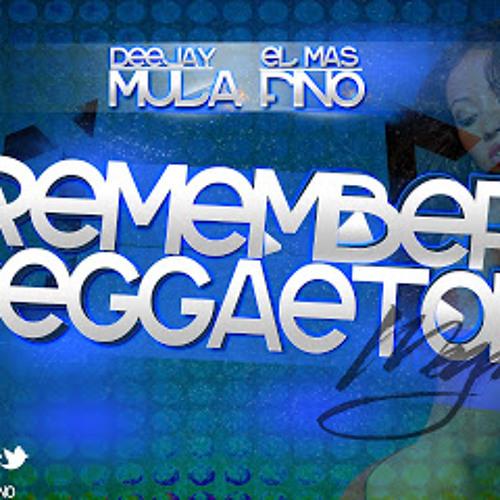 Megamix Remember Reggaeton Mula Deejay Y El Mas Fino