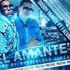 El Amante - Dj Reizel Rmx's - Dady Yankee Ft. J Alvarez (Turro) Portada del disco