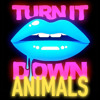 Kaskade vs. Martin Garrix & Victor Niglio - Turn It Down Animals (Kaskades Festival Mash Up)