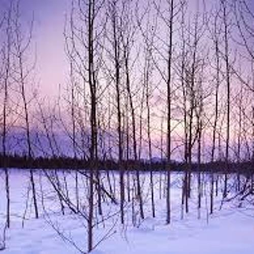 Winter Sleep By Edith Matilda Thomas (Diane Havens)