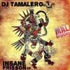 Download Dj Geo Mix & Dj Tamalero - Viva Mexico (Tribal 2014) Mp3