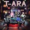 T-ARA What Should I Do