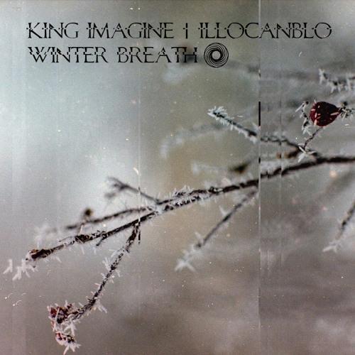 118 / King Imagine - Midiya