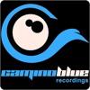 P.B.K. - Time Space Energy ( camino blue recordings )