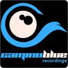 P.B.K. feat. Wiosna - Your Harmony ( camino blue recordings )