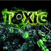 Reverse Fanatic - DJ Toxic Tribute Mix