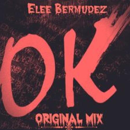 Elee Bermudez - OK ( Original Mix ) DEMO.
