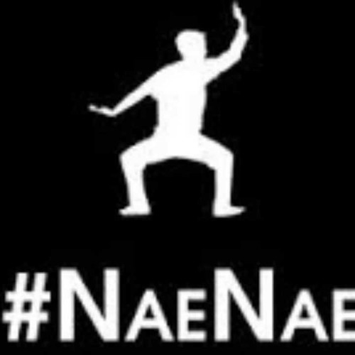 The Official Nae Nae Dance Club Remix @Dj93rd #Empire