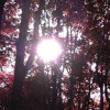 The First Rays of the Sun - spoken word mix