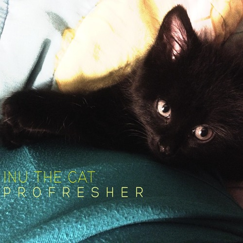 Profresher - Inu The Cat (Mas Sol Exclusive)